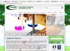 เว็บไซต์ Evergreen Chemical (Thailand)