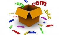 รับจดโดเมนเนม / Domain Name